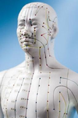 Akupunktur TCM Hannover